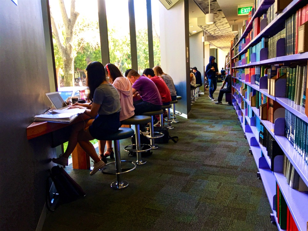 students-sitting-by-the-library-windows-studying-in-the-natural-sunlight-using-laptops-one-student-in_t20_AlaVaV